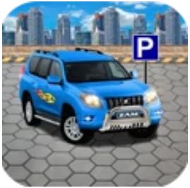 真实停车场模拟器 V1.2.3 安卓版