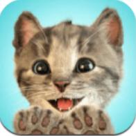 我最喜爱的猫猫 V1.0 安卓版