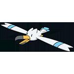 《宝可梦:剑/盾》长翅鸥属性特性图鉴