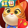 猫咪成长记 V1.0 安卓版