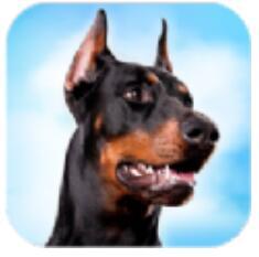 杜宾狗模拟器 V1.0.3 安卓版