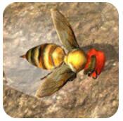 蜜蜂生存模拟器 V1.0 安卓版