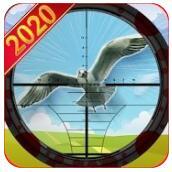 猎鸟猎人 V1.0 安卓版