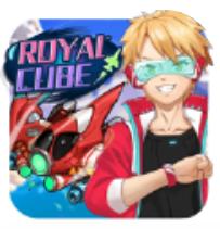 Royal Cube V1.1 安卓版