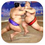 相扑摔跤战士 V1.0.5 安卓版