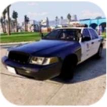 台湾警车模拟器 V1 安卓版