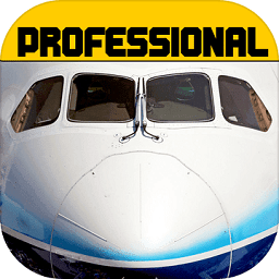 模拟飞行787 V1.9.5 安卓版