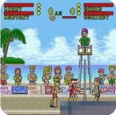 闪电海滩排球 日版