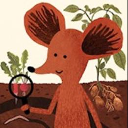 小棕鼠的自然生态百科 V1.0.6 安卓版