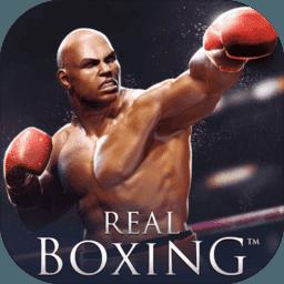 真实拳击 V2.1 无限金钱版