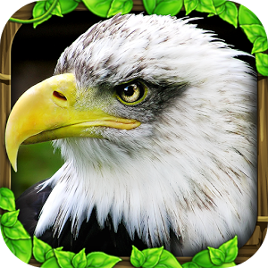 老鹰模拟器 V1.0 破解版