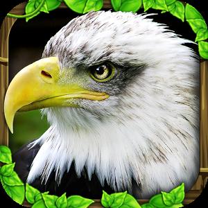 老鹰模拟器 V1.1 IOS版