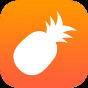 菠萝视频 网页版