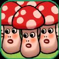 养菇进化模拟器 V2.2.1 安卓版