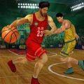 篮球3d模拟 V1.0.8 安卓版
