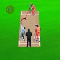 玩现场板球 v1.0 苹果版
