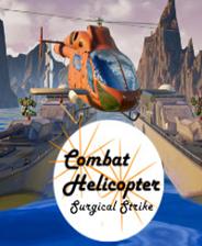 战斗直升机:外科打击
