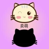 记忆寻猫咪 v1.0 苹果版