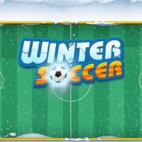 欧冠足球冬季 v1.0 苹果版