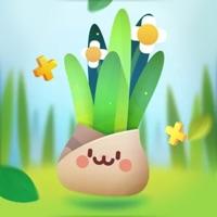贪嘴植物 v1.0 苹果版