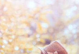 用Photoshop把夏季外景美转为小清新的秋季色