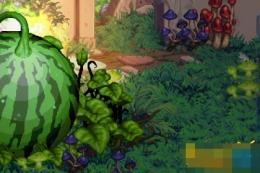dnf西瓜副本怎么打 怎么快速一天刷70个西瓜