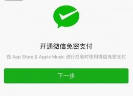 苹果app store怎么开通微信支付