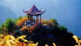科普知识:重阳节谚语、习俗及传说