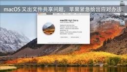 苹果Mac OS文件共享无法访问解决方法教程
