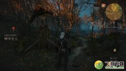 巫师3林中夫人任务图文攻略