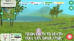抖音《the pig simulator2》游戏玩法攻略