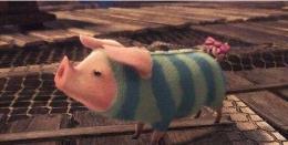 怪物猎人世界怎么提升噗吱猪好感度 噗吱猪好感度提升技巧
