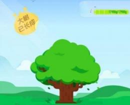 支付宝蚂蚁森林保护地区介绍