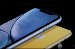 苹果iphone xr有指纹识别吗 iphone xr支持指纹识别吗