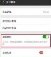 荣耀10青春版手机设置微信指纹支付方法教程