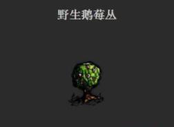 一小时人生鹅莓林具体位置介绍