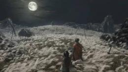 《只狼:影逝二度》源之宫剧情猜想