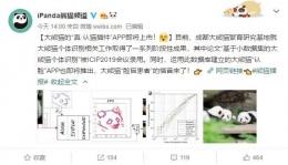 大熊猫认脸APP功能作用使用教程