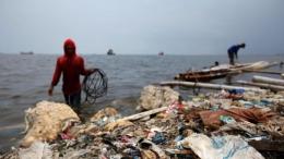 印尼洋垃圾退美国是怎么回事 印尼洋垃圾退美国是真的吗