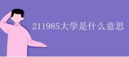 211985大学是什么意思?