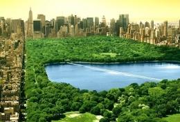 纽约买豪宅送上太空仍滞销是怎么回事?
