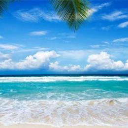 长辈头像大全唯美风景 爸爸妈妈的微信头像海边美景