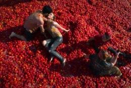 圣彼得堡番茄大战是怎么回事 圣彼得堡番茄大战是什么情况