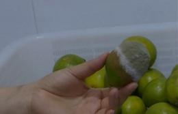 CoCo奶茶腐烂水果是怎么回事 CoCo奶茶腐烂水果是什么情况