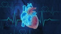 人工心脏获批上市是怎么回事 人工心脏获批上市是什么情况