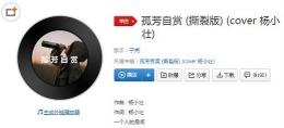 抖音《孤芳自赏》杨小壮歌曲在线试听及歌词MV视频