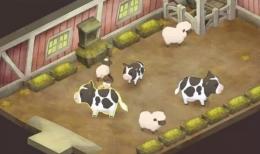 《哆啦A梦:大雄的牧场物语》鸡购买方法攻略