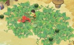 《哆啦A梦:大雄的牧场物语》女神喜爱物品介绍