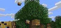 我的世界蜜蜂刷新位置一览