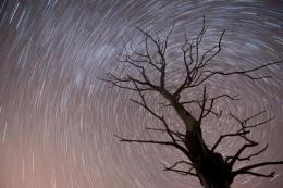 北金牛座流星雨13日迎来极大是怎么回事?